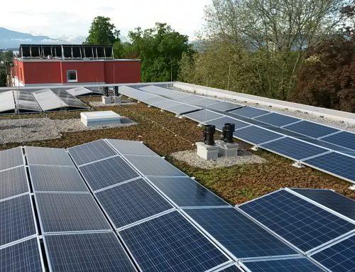 Umweltbewusstsein ist bei der GWG Lindau gelebte Realität